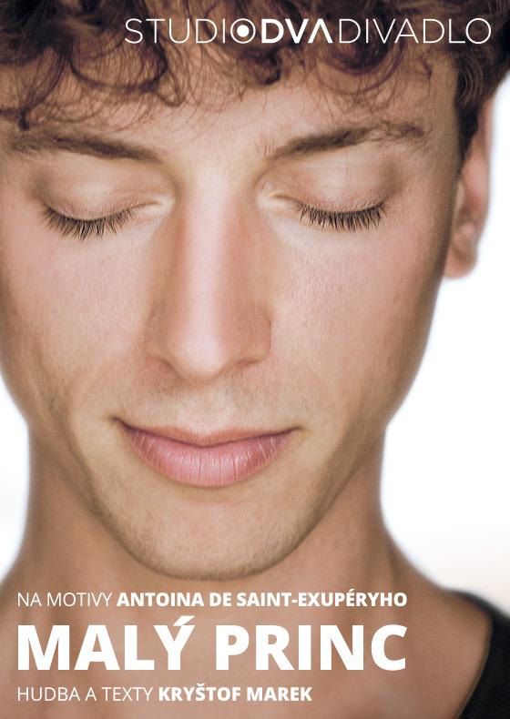 Malý princ<BR>Na motivy knihy Antoina de Saint-Exupéryho