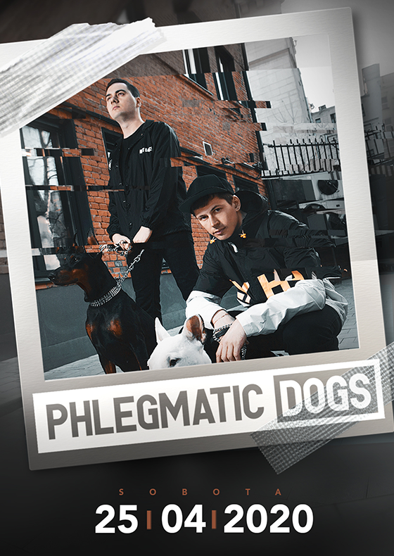 Phlegmatic Dogs