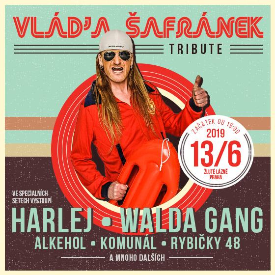 Vláďa Šafránek<br>Tribute koncert- live<br>Charitativní akce